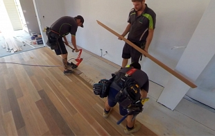 Spotted Gum - Forest to Fine Flooring